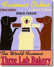 three labradors black chocolate and yellow