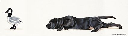 labrador retriever puppy black attack by Brett Longley